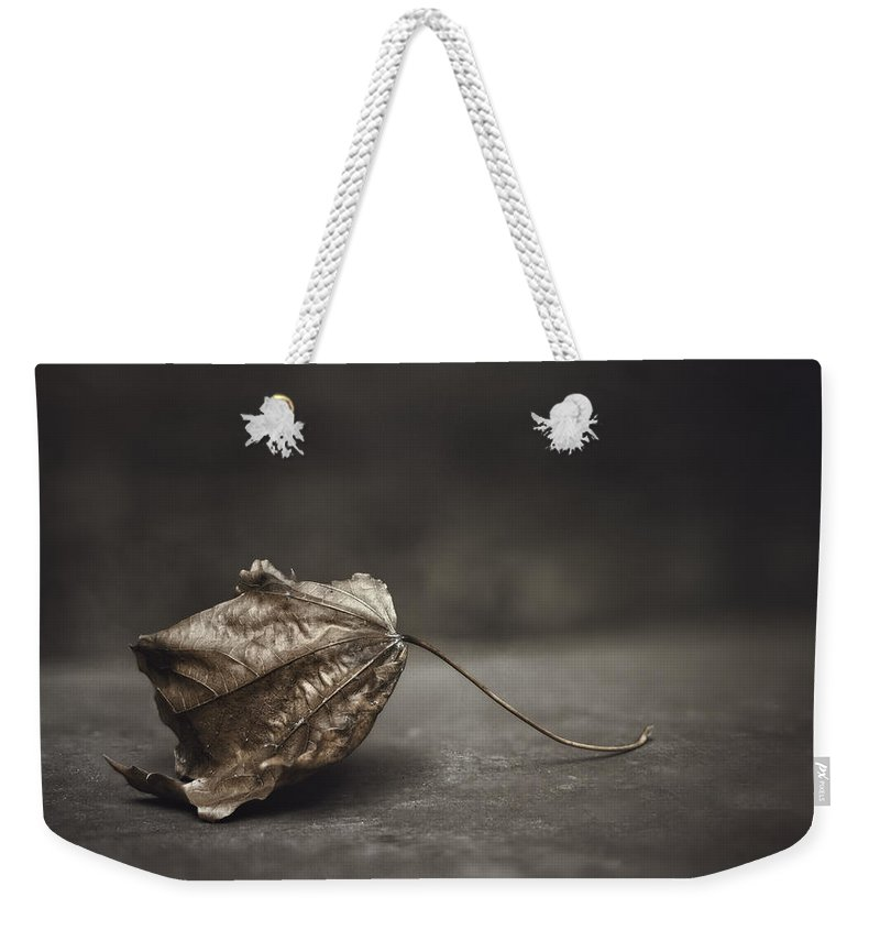 Maple Weekender Tote Bag featuring the photograph Fallen Leaf by Scott Norris