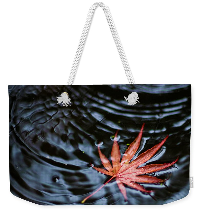 Red Leaf Weekender Tote Bag featuring the photograph Fallen Red by Mike Reid