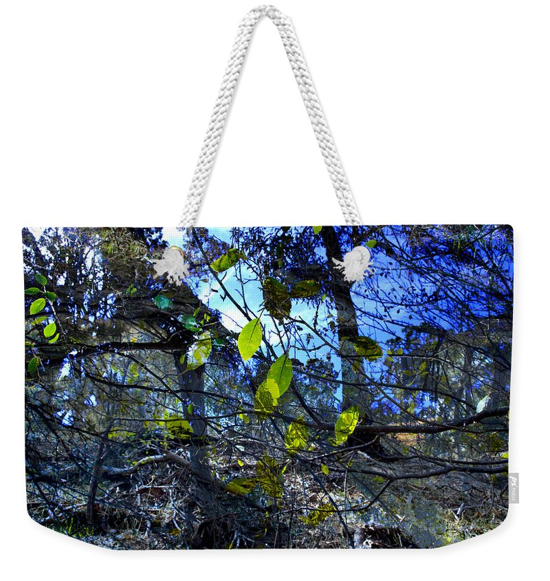 Leaves Weekender Tote Bag featuring the photograph Falling Leaves by Kelly Jade King