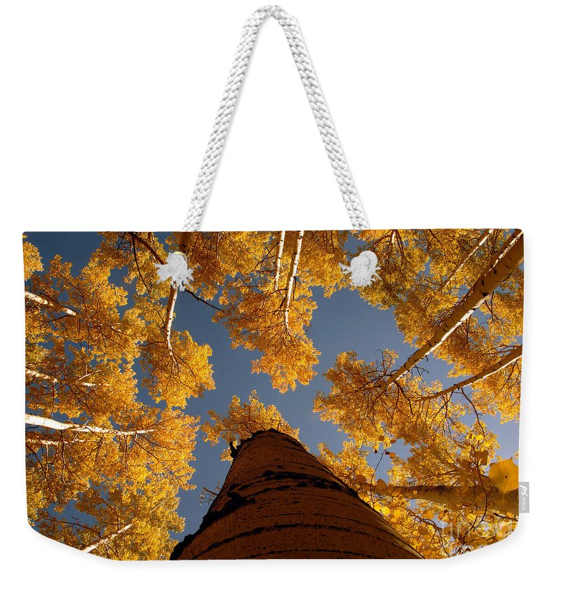 Fall Weekender Tote Bag featuring the photograph Falling Sky by David Lee Thompson