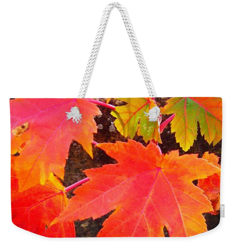 North America Weekender Tote Bag featuring the photograph Falltime ... by Juergen Weiss
