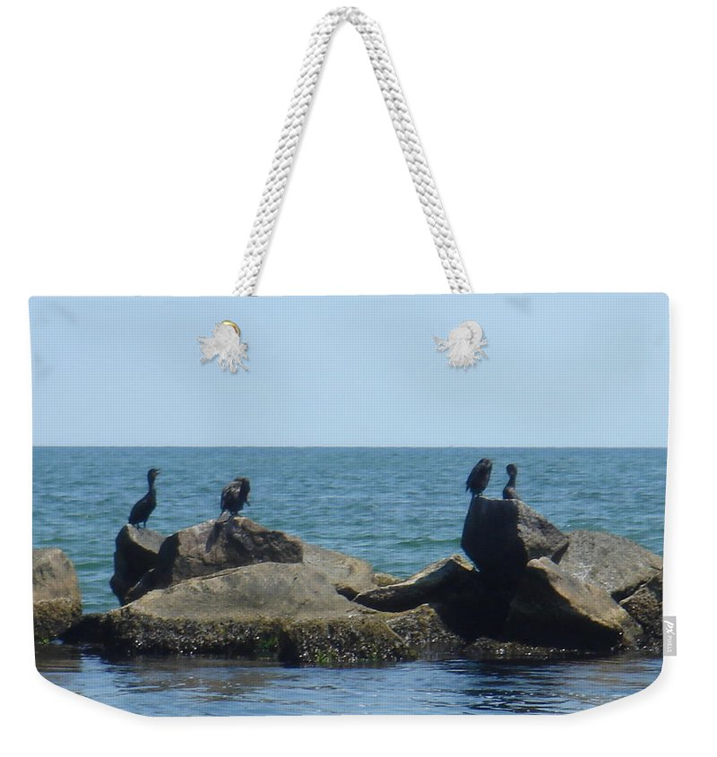 Birds Weekender Tote Bag featuring the photograph Falmouth by Donna Walsh