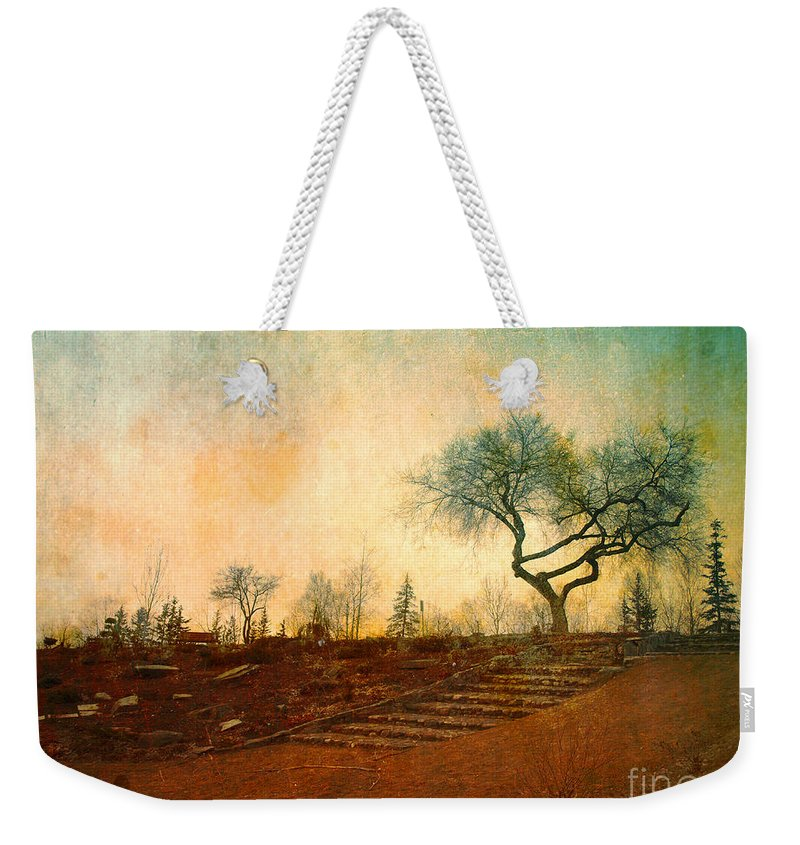 Tree Weekender Tote Bag featuring the photograph Familiar Like Home by Tara Turner