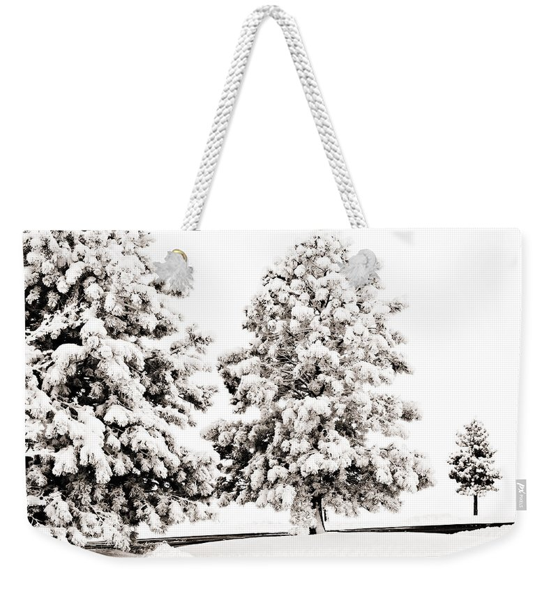 Trees Weekender Tote Bag featuring the photograph Family Of Trees by Marilyn Hunt