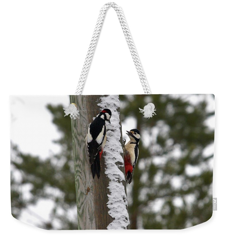 Lehtokukka Weekender Tote Bag featuring the photograph Family Talk by Jouko Lehto