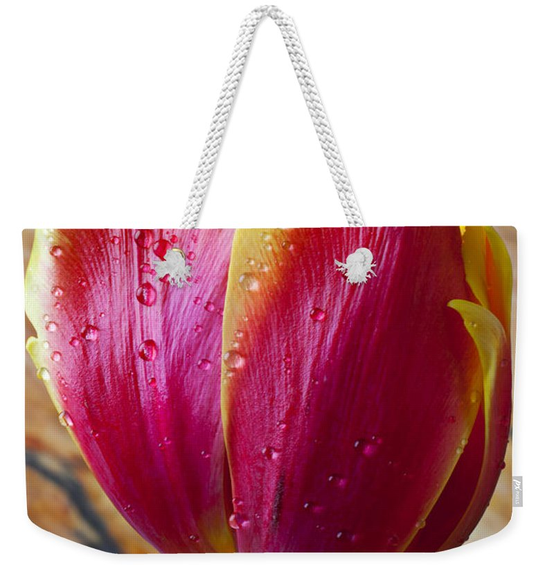 Fancy Weekender Tote Bag featuring the photograph Fancy Tulip by Garry Gay