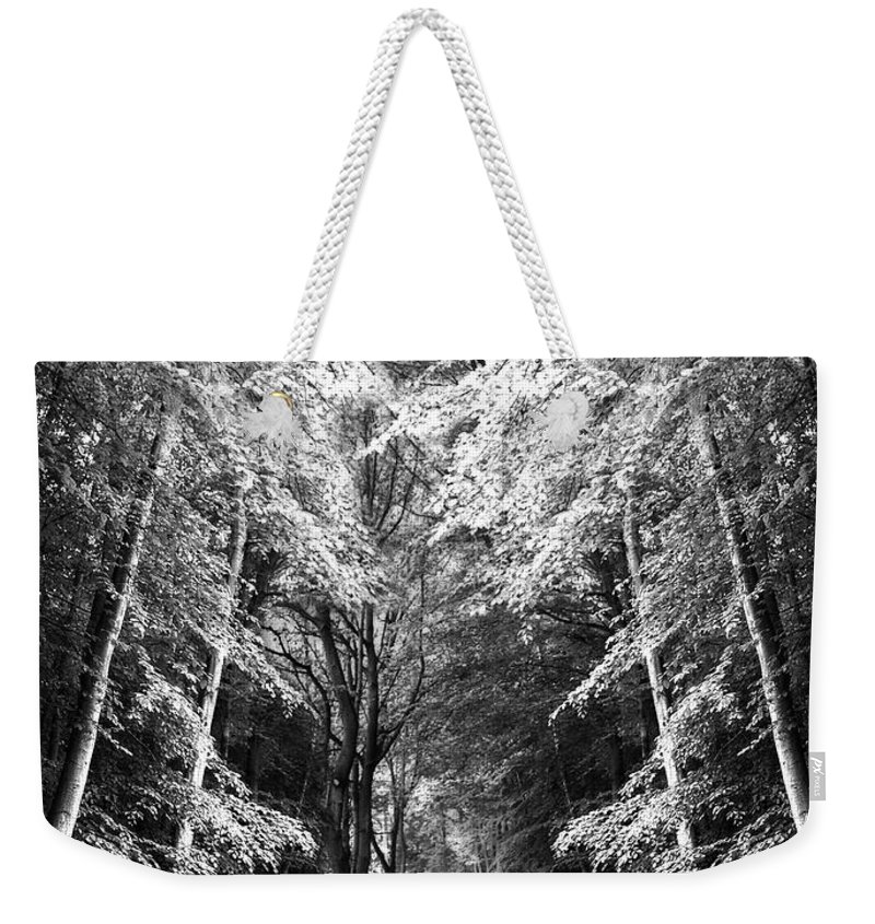 Abstract Weekender Tote Bag featuring the photograph Fantasy Land by Svetlana Sewell