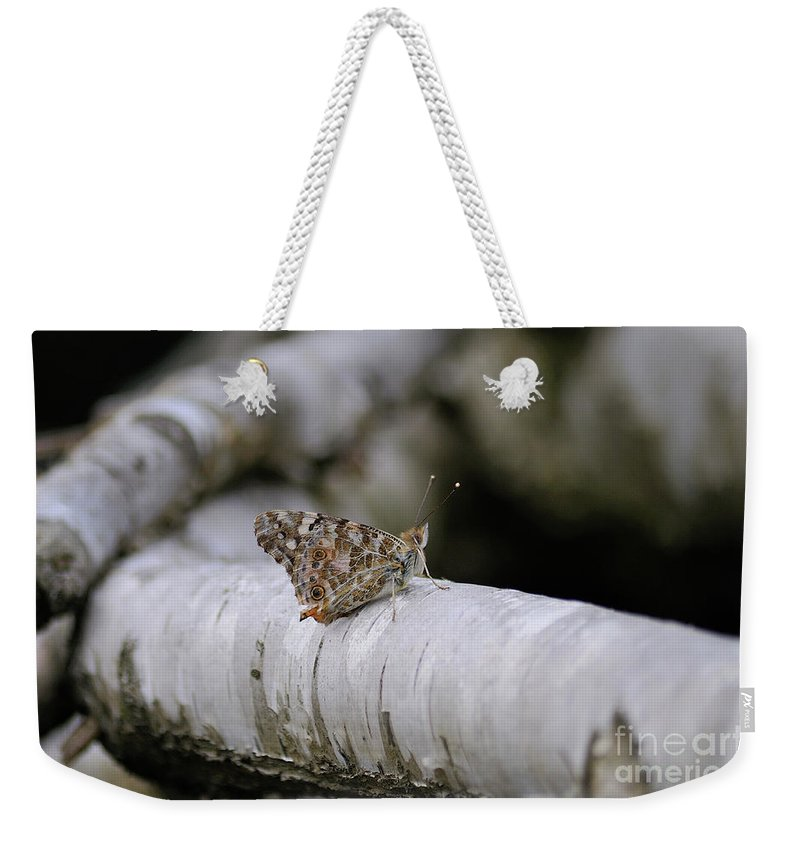 Farfalla Weekender Tote Bag featuring the photograph Farfalla by Ilaria Andreucci
