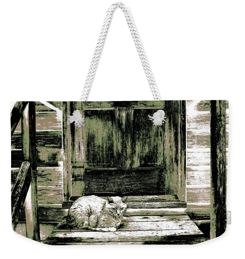 Farm Cat Weekender Tote Bag featuring the digital art Farm Cat by Will Borden