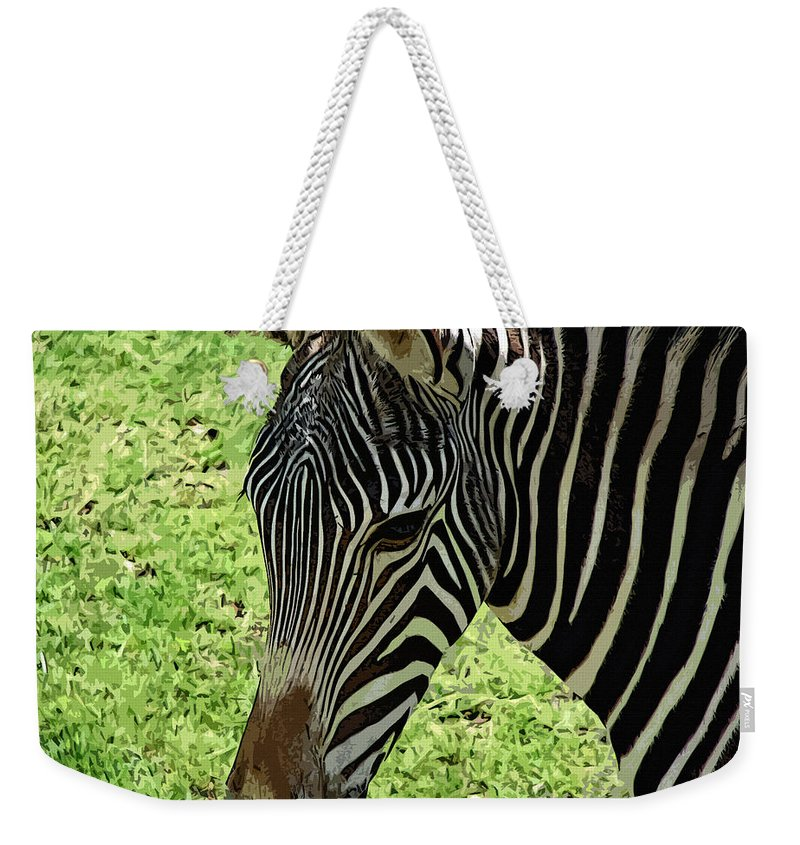 Fascinated Weekender Tote Bag featuring the photograph Fascinated by Lisa S Baker