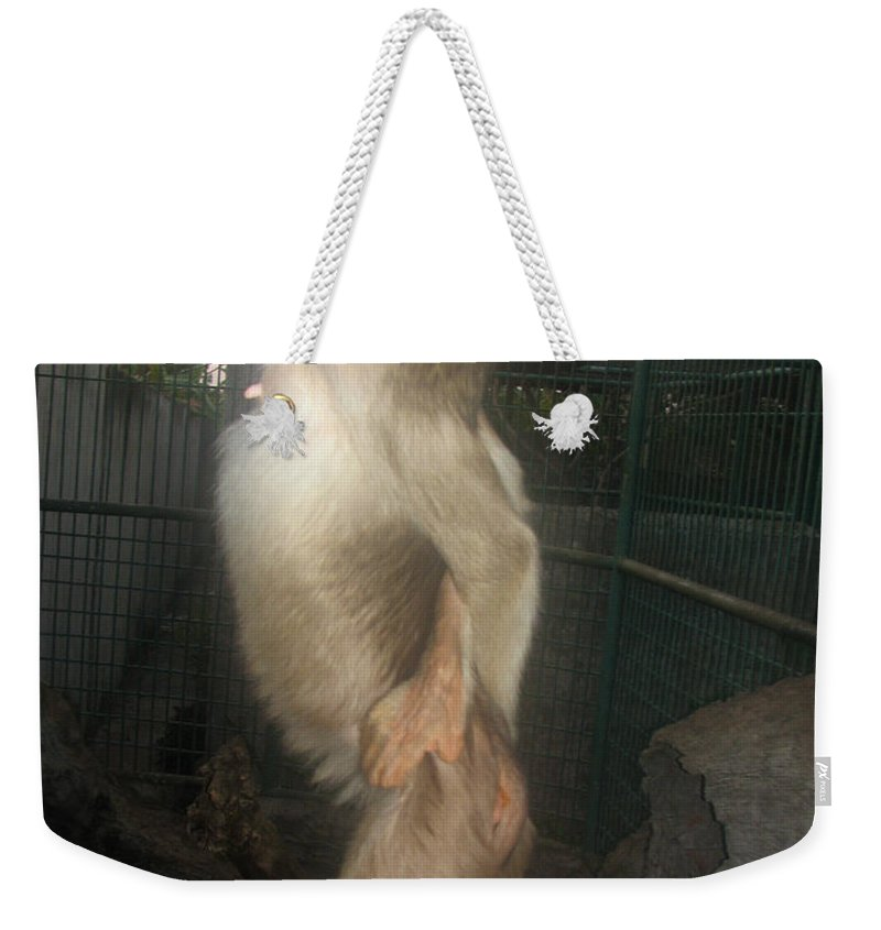 Fashion Model Weekender Tote Bag featuring the photograph Fashion Model by Sergey Lukashin