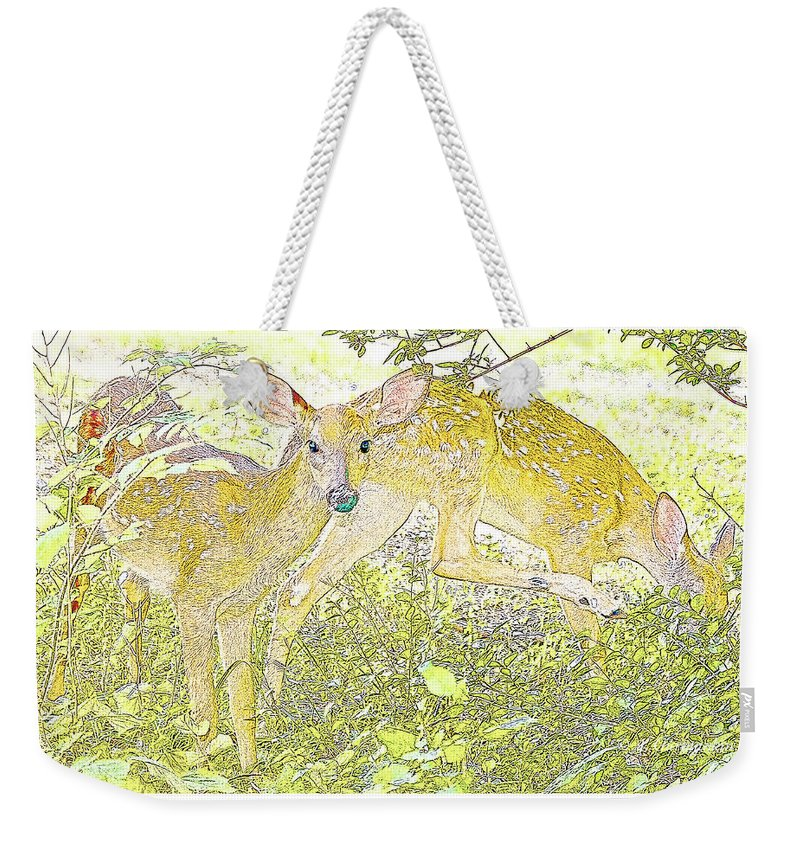 Omnivore Weekender Tote Bag featuring the photograph Fawn Twins Digital Painting by A Gurmankin