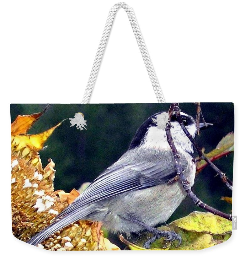 Autumn Weekender Tote Bag featuring the photograph Feast For A Chickadee by Will Borden