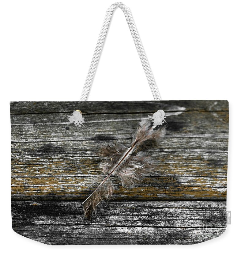 Feather Weekender Tote Bag featuring the photograph Feather by David Carr