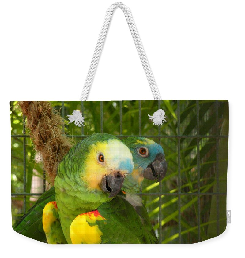 Birds Weekender Tote Bag featuring the photograph Feathered Friends by Maria Bonnier-Perez