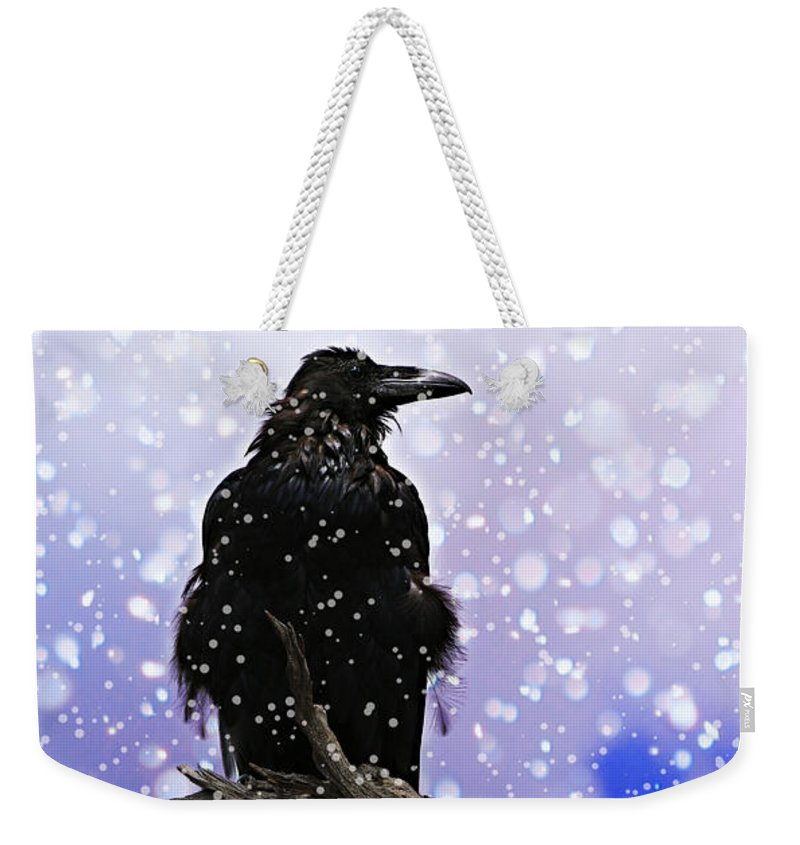 Bird Weekender Tote Bag featuring the photograph Feathers by Iryna Goodall