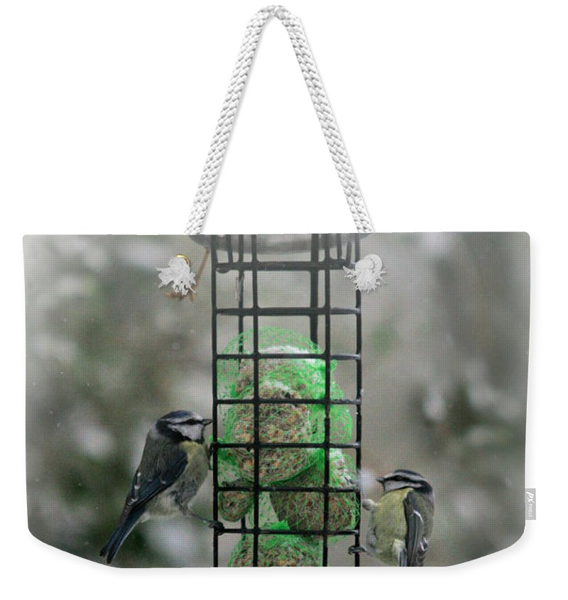 Winter Weekender Tote Bag featuring the photograph Feed The Hunger by Angel Ciesniarska
