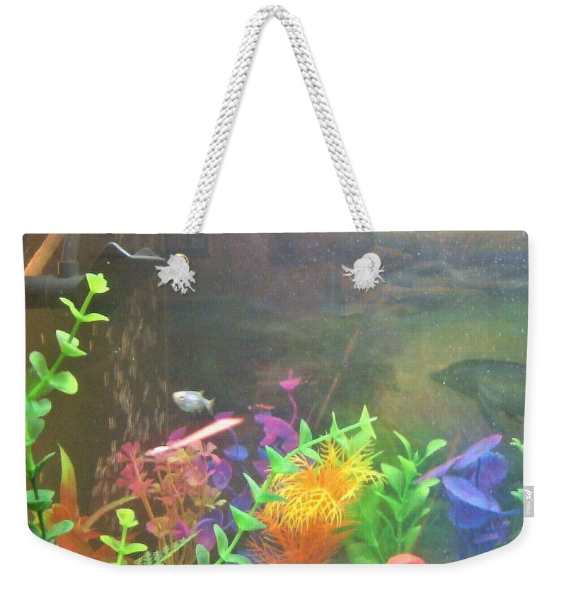 Tropical Fish Weekender Tote Bag featuring the photograph Feeding Time For Bob by Denise Fulmer