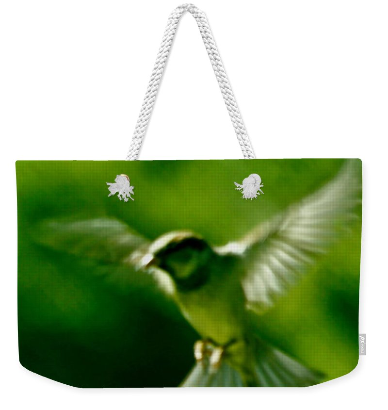 Animal Weekender Tote Bag featuring the photograph Feeling Free As A Bird Wall Art Print by Carol F Austin