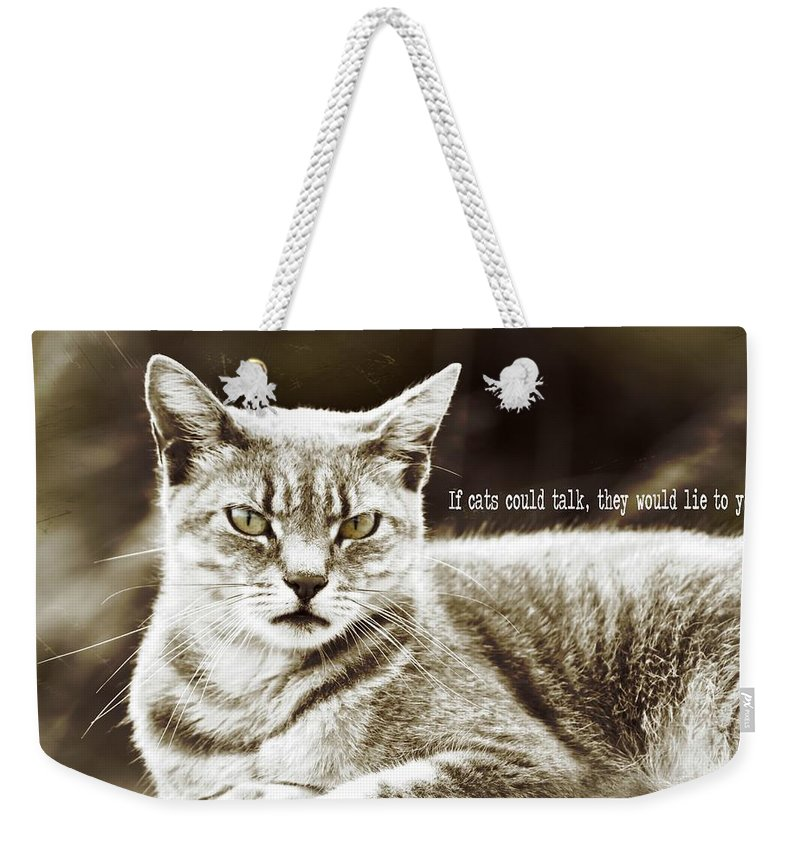 Cat Weekender Tote Bag featuring the photograph Feline Moment Quote by JAMART Photography