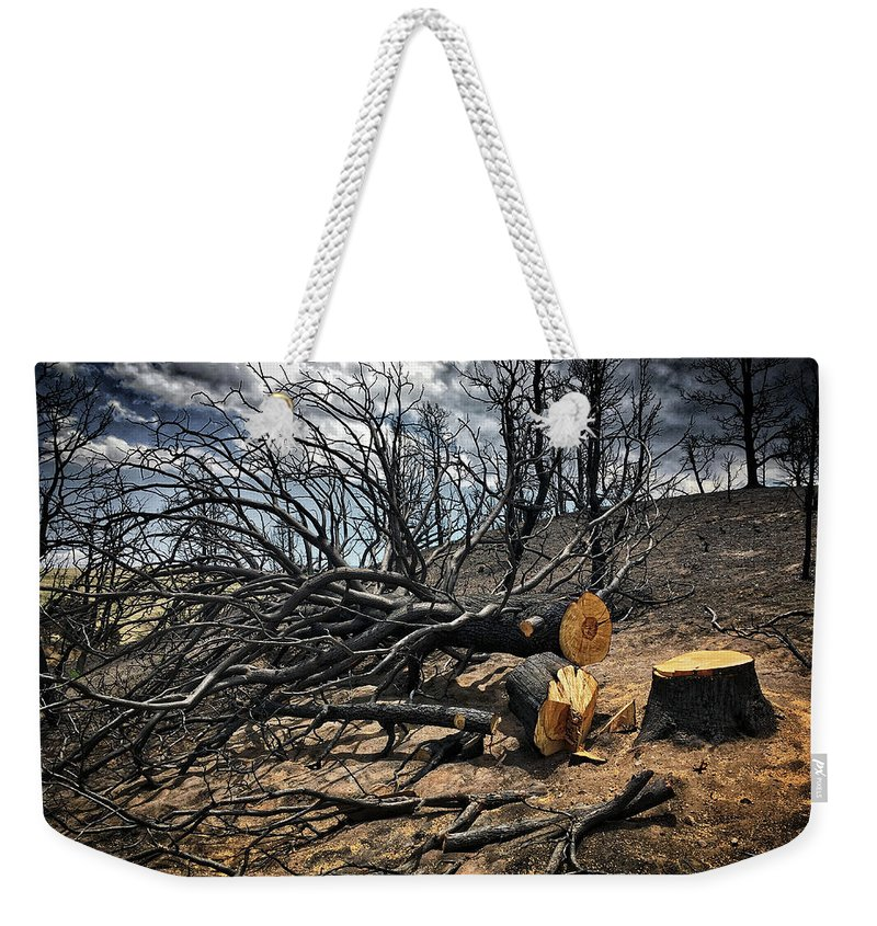 Trees Weekender Tote Bag featuring the photograph Felled After The Wildfire by Douglas Craig