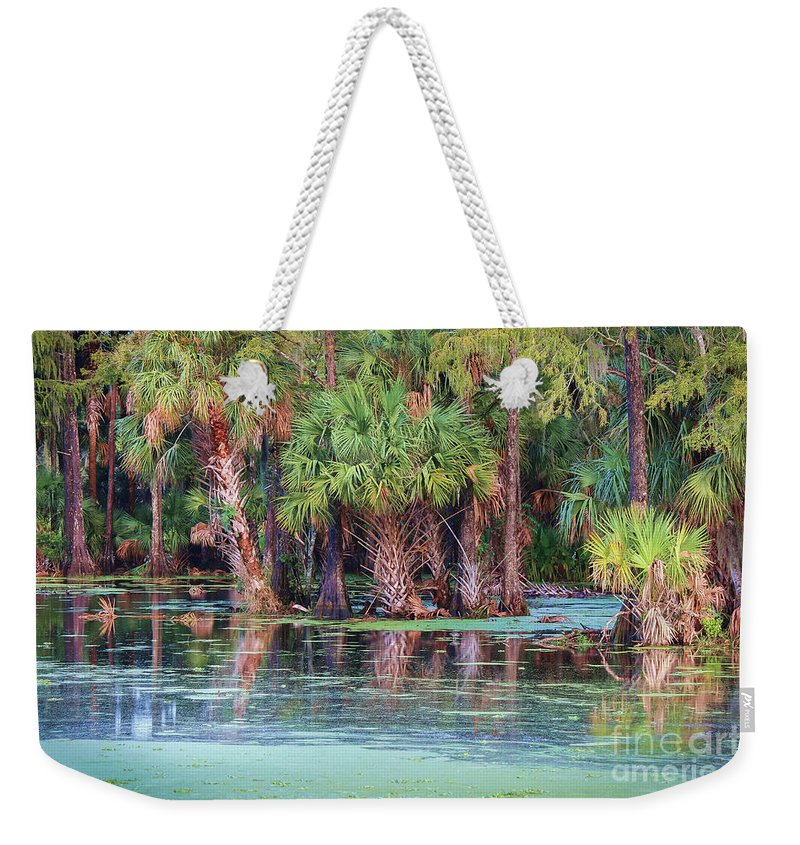 Liesl Walsh Weekender Tote Bag featuring the photograph Fellsmere Cypress Swamp by Liesl Walsh