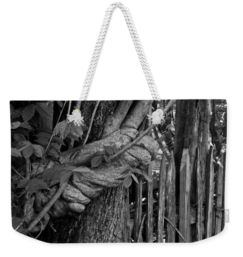 Fence Weekender Tote Bag featuring the photograph Fence In The Tropics by Douglas Barnett