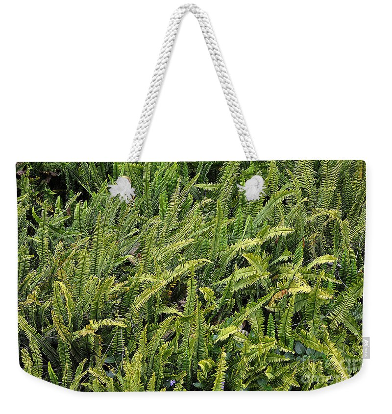 Clay Weekender Tote Bag featuring the photograph Fern by Clayton Bruster