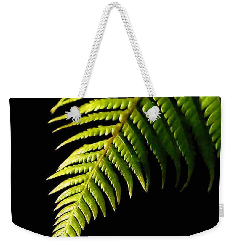 Fern Weekender Tote Bag featuring the photograph Fern by Dragica Micki Fortuna