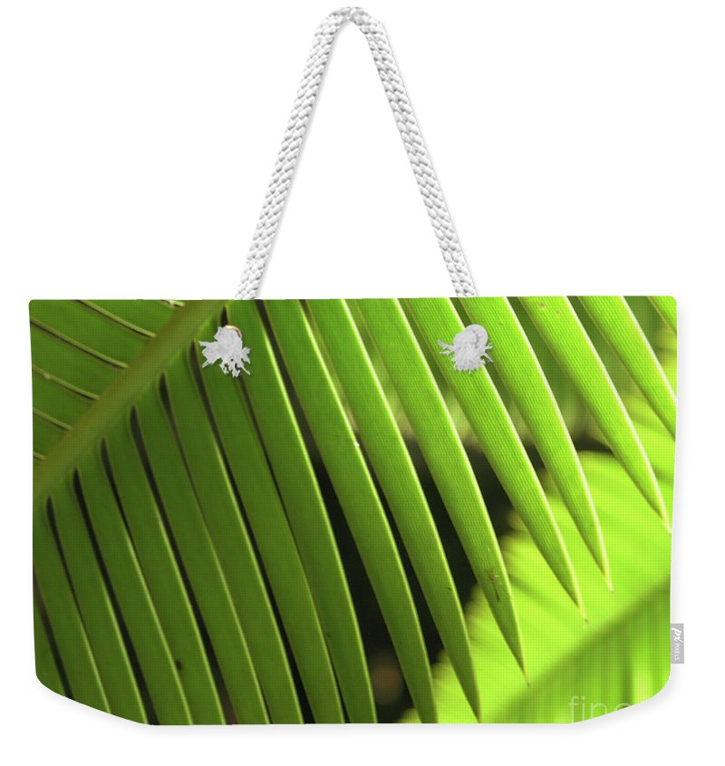 Green Weekender Tote Bag featuring the photograph Fern Leaf by Carole Irving