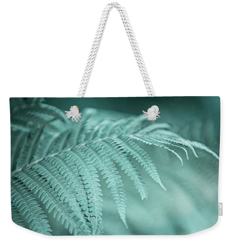 Jenny Rainbow Fine Art Photography Weekender Tote Bag featuring the photograph Fern Leaves Abstract 1. Nature In Alien Skin by Jenny Rainbow