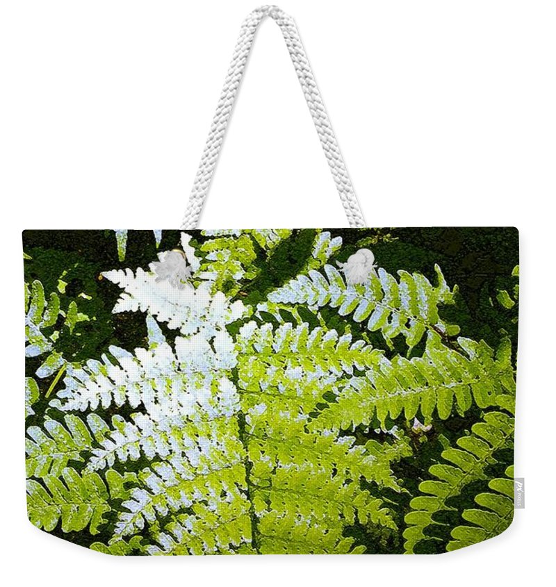 Ferns Weekender Tote Bag featuring the photograph Ferns by Nelson Strong