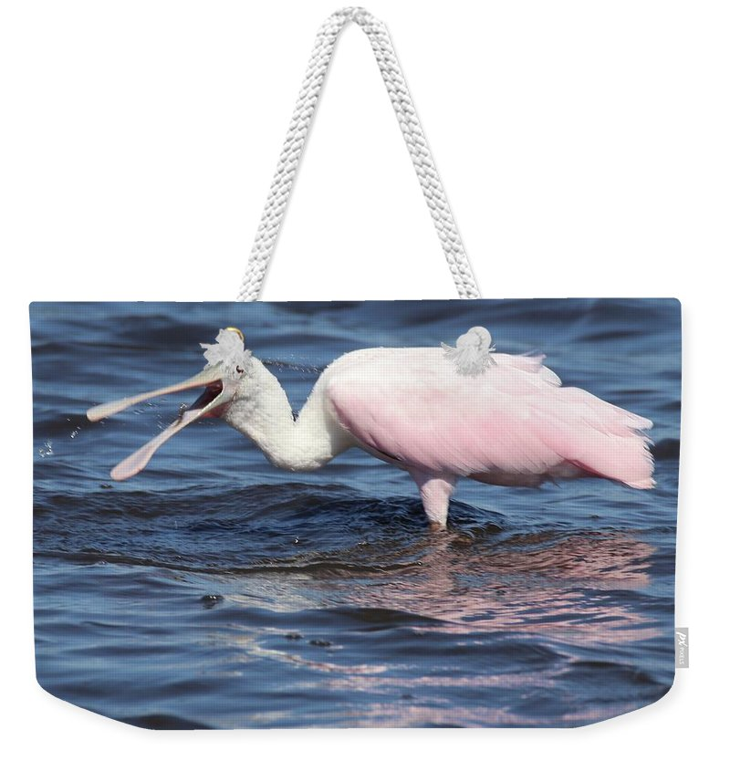 Roseate Spoonbill Weekender Tote Bag featuring the photograph Fishing For Dinner by Bill Zajac
