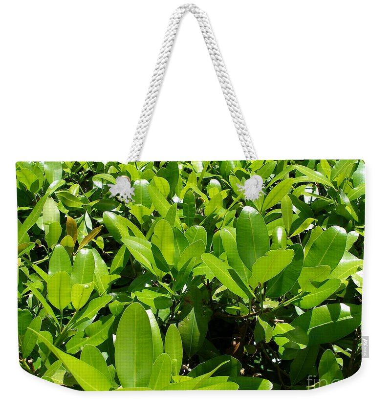 Shrub Weekender Tote Bag featuring the photograph Field Of Green by Maria Bonnier-Perez