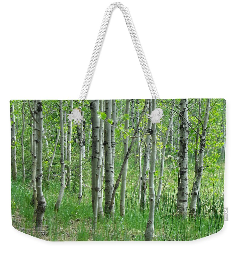 Tree Weekender Tote Bag featuring the photograph Field Of Teens by Donna Blackhall