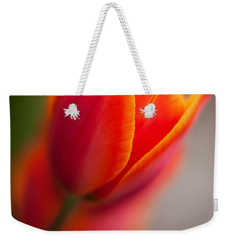 Tulip Weekender Tote Bag featuring the photograph Fiery Tulip by Mike Reid