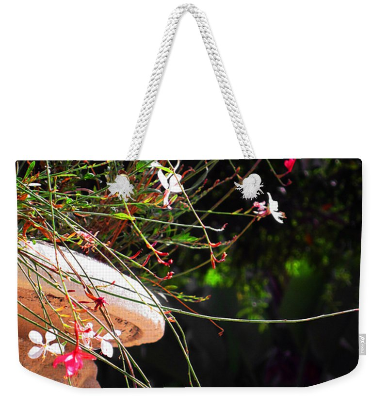 Filigree Weekender Tote Bag featuring the photograph Filigree-iii by Susanne Van Hulst