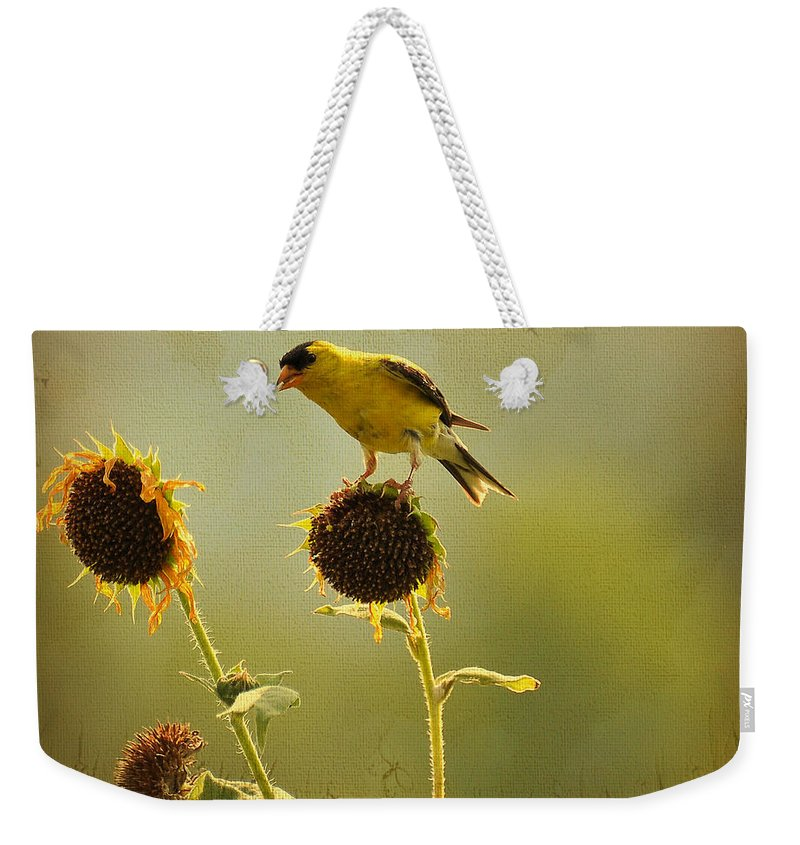 Finch Weekender Tote Bag featuring the photograph Finch 1 by Todd Hostetter
