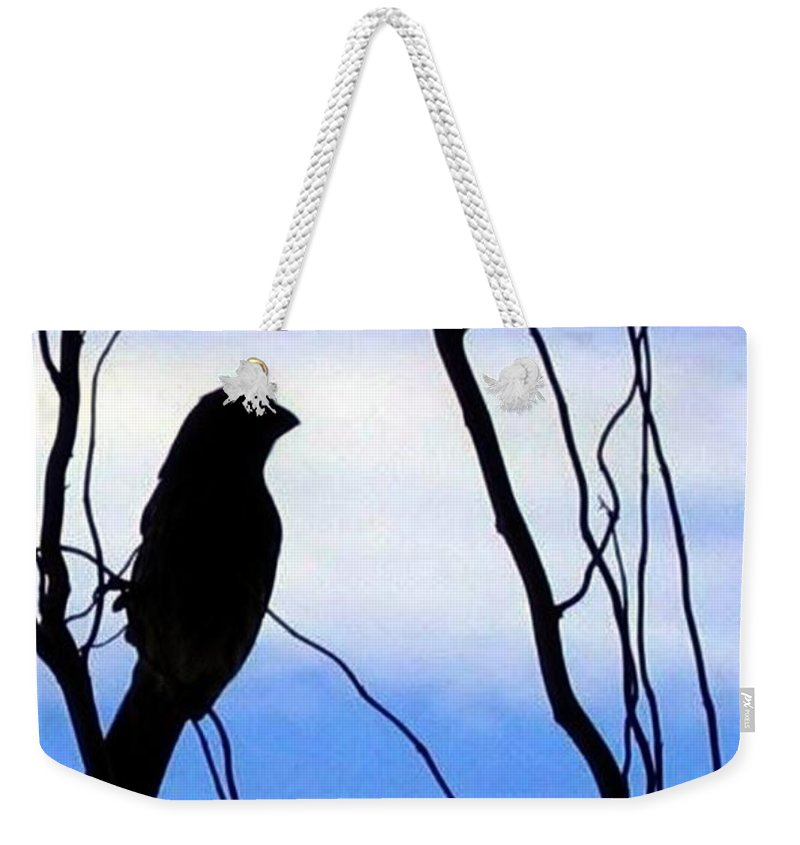 Finch Weekender Tote Bag featuring the photograph Finch Silhouette 1 by Will Borden