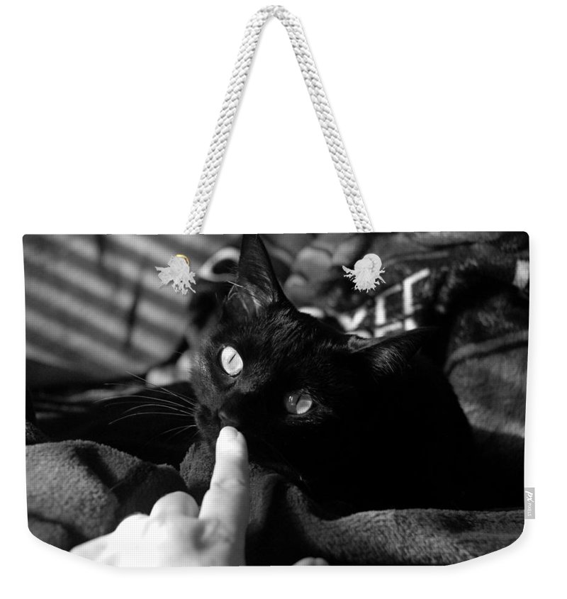 Domestic Weekender Tote Bag featuring the photograph Finger Kiss Cat by Katherine Nutt