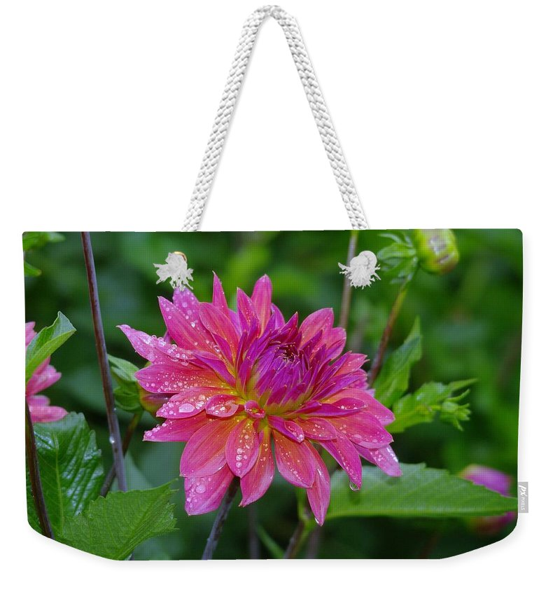 Flowers Weekender Tote Bag featuring the photograph Fire And Rain by Jeff Swan