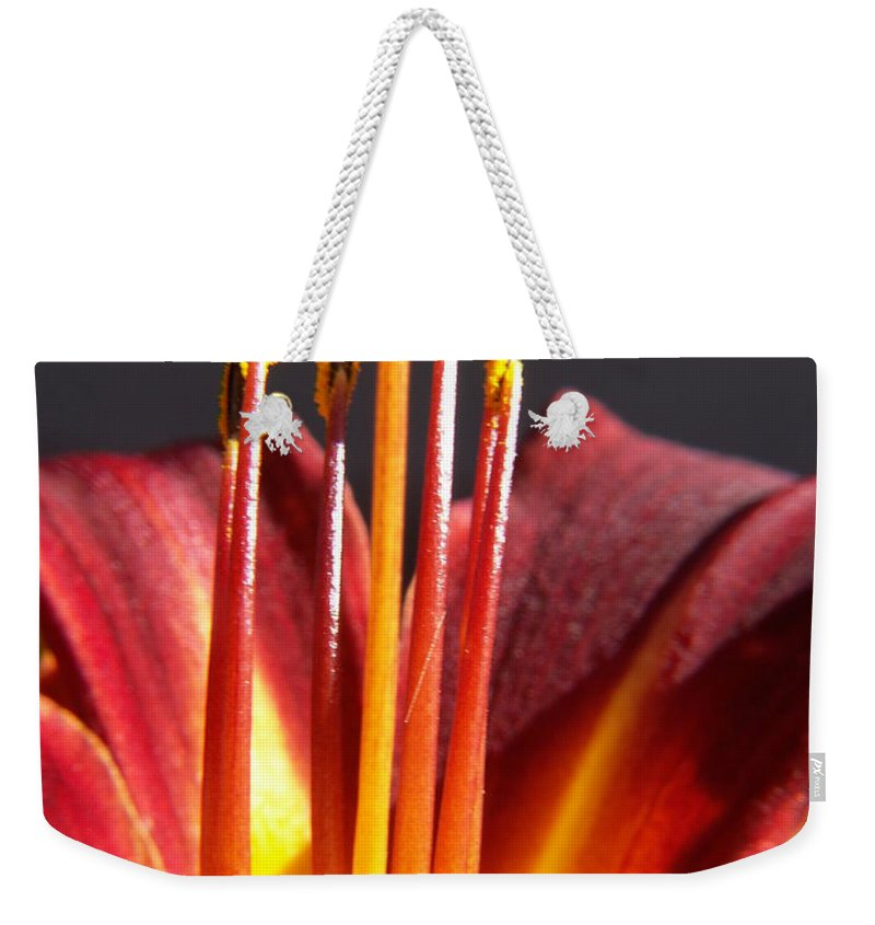 Fire Lily Weekender Tote Bag featuring the photograph Fire Lily by Amy Fose