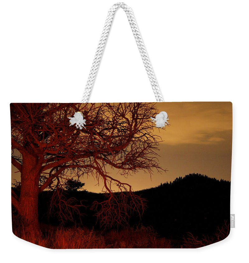 Landscape Weekender Tote Bag featuring the photograph Fire Tree by Jeffery Ball