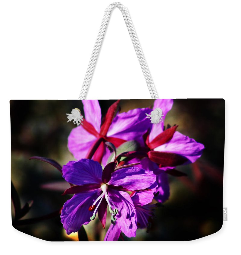 Fireweed Weekender Tote Bag featuring the photograph Fireweed by Anthony Jones