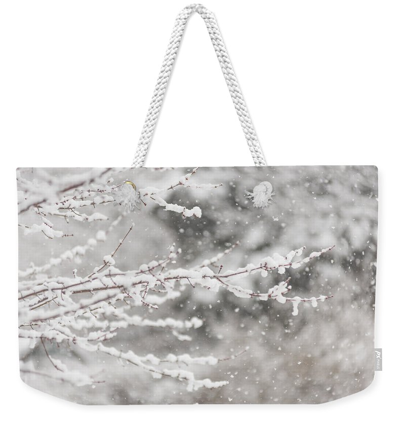 Terry Deluco Weekender Tote Bag featuring the photograph First Day Of Spring 2015 New Jersey by Terry DeLuco