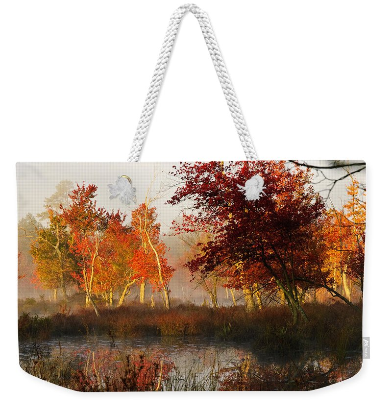 Landscape Weekender Tote Bag featuring the photograph First Light At The Pine Barrens by Louis Dallara