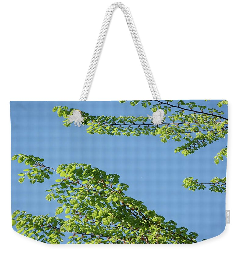 Tree Weekender Tote Bag featuring the digital art First Sign Of Spring I by DigiArt Diaries by Vicky B Fuller