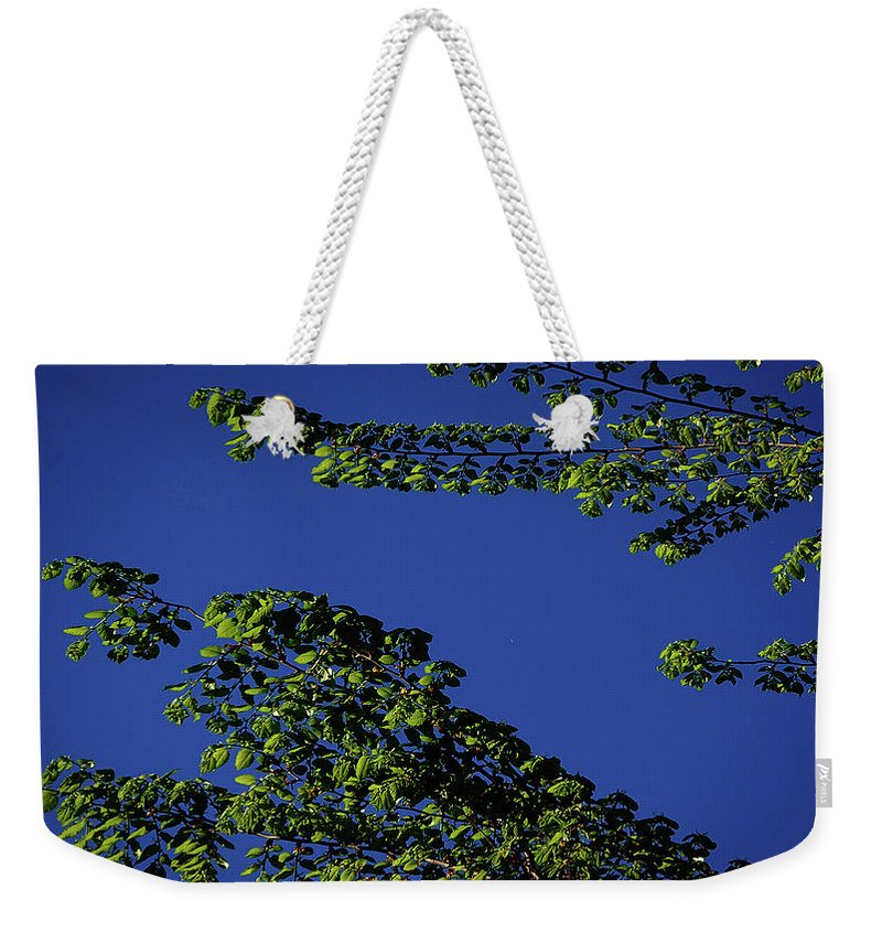 Tree Weekender Tote Bag featuring the digital art First Signs Of Spring Iv by DigiArt Diaries by Vicky B Fuller