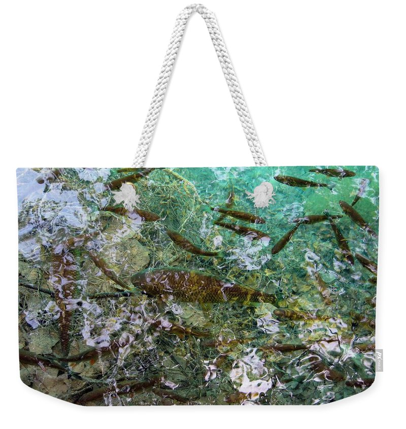 Croatia Weekender Tote Bag featuring the photograph Fish by Helena Jajcevic
