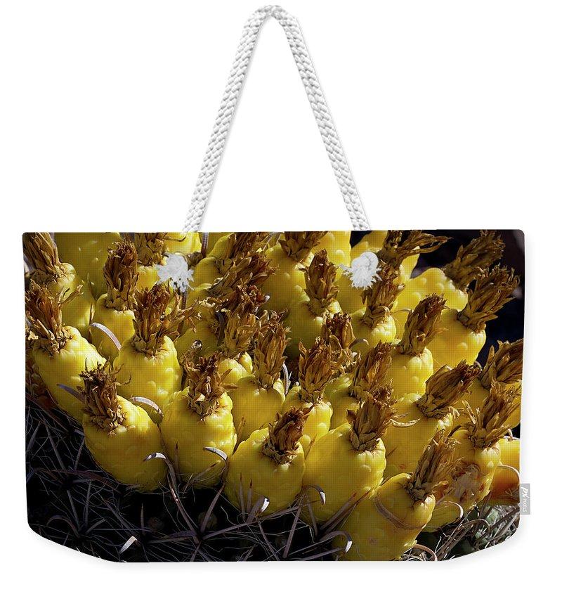 Cactus Weekender Tote Bag featuring the photograph Fishhook Barrel Cactus Fruit by Phyllis Denton